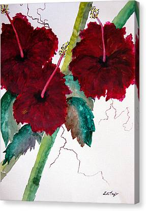 Scarlet Red Canvas Print by Lil Taylor