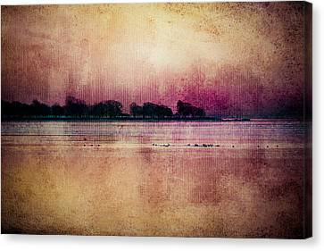 Scattered Dreams Canvas Print by Kristin Hunt