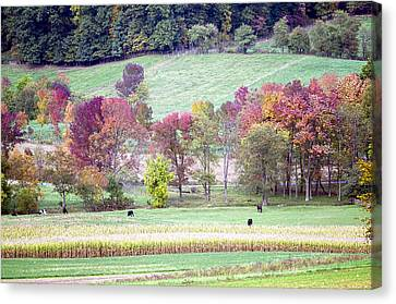 Scenic Amish Landscape 2 Canvas Print by SharaLee Art
