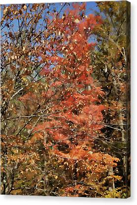 Scenic Autumn  Canvas Print