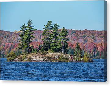 Canvas Print featuring the photograph Scenic Fall View by Paul Freidlund