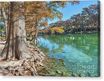 Scenic Frio River Canvas Print by Tod and Cynthia Grubbs