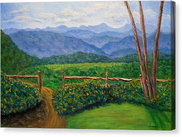 Scenic Overlook Canvas Print by Sandy Hemmer