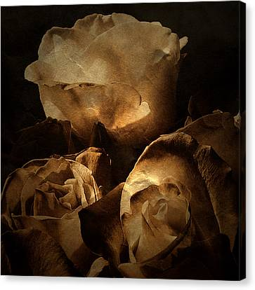 Scent Of A Memory Canvas Print by Bonnie Bruno