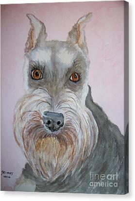 Schnauzer Canvas Print by Carol Grimes