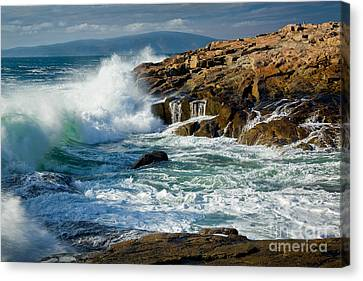 Schoodic Surf Canvas Print by Susan Cole Kelly