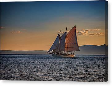 Penobscot Bay Canvas Print - Schooner At Sunset by Rick Berk