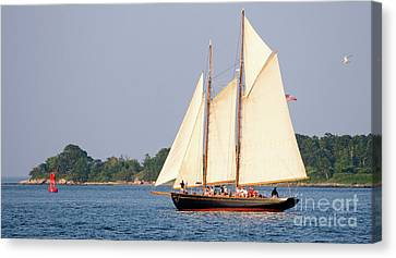 Schooner Cruise, Casco Bay, South Portland, Maine  -86696 Canvas Print by John Bald
