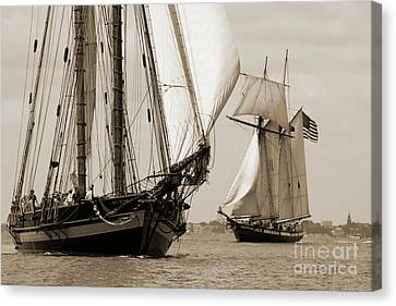 Schooner Pride Of Baltimore And Lynx Canvas Print by Dustin K Ryan