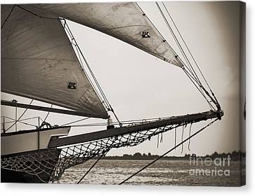 Schooner Pride Tall Ship Charleston Sc Canvas Print