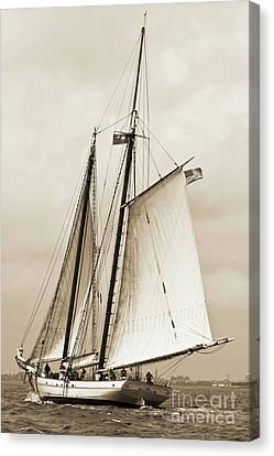 Schooner Sailboat Spirit Of South Carolina Sailing Canvas Print by Dustin K Ryan