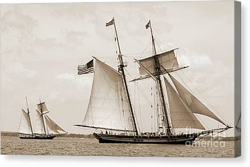 Schooners Pride Of Baltimore And Lynx Canvas Print by Dustin K Ryan
