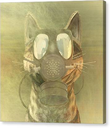 Schrodinger Underestimates The Cat. Canvas Print by Carol and Mike Werner