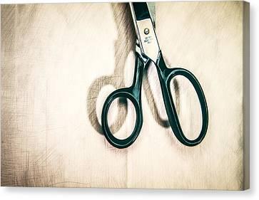 Scissor Handles Canvas Print by Yo Pedro