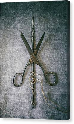 Scissors And Needle Canvas Print by Carlos Caetano