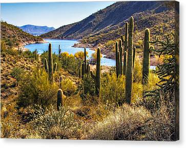 Scorpion Cove Canvas Print