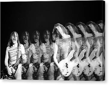 Scorpions Canvas Print by Sue Arber