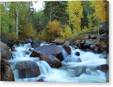 Canvas Print featuring the photograph Scott Gomer Creek At Guanella Pass by Marie Leslie