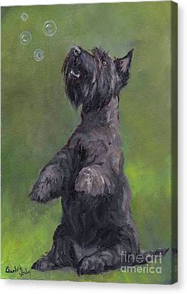 Scottie Likes Bubbles Canvas Print by Charlotte Yealey