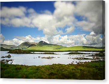 Scottish Highlands Canvas Print by Sarah Coppola