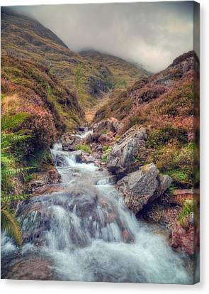 Scottish Mountain Stream Canvas Print