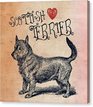 Scottish Terrier Canvas Print by Brandi Fitzgerald