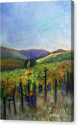 Scotts Vineyard Canvas Print by Donna Walsh