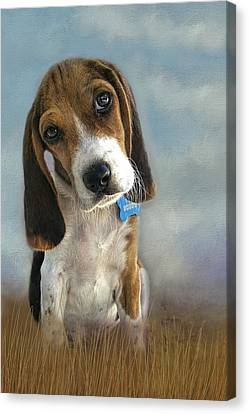Canvas Print featuring the photograph Scout by Steven Richardson