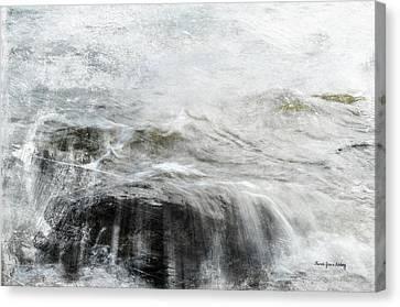 Scratching The Surface Canvas Print by Randi Grace Nilsberg