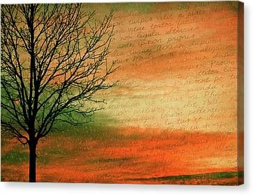 Bare Trees Canvas Print - Scribble At Sunset by Trish Tritz