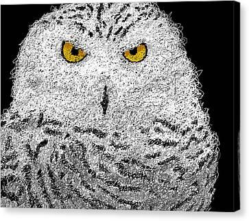Snowy Night Night Canvas Print - Digital Scribble - Snowy Owl by Nathan Shegrud