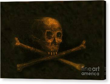 Scull And Crossbones Canvas Print by David Lee Thompson