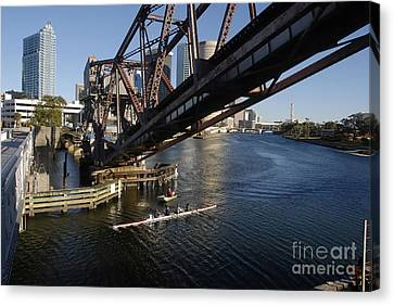 Sculling The Hillsborough Canvas Print