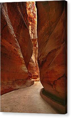 Sculpted By Wind And Water - Petra Canvas Print by Nabila Khanam