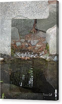 Sculpture Garden II Canvas Print by Suzanne Gaff