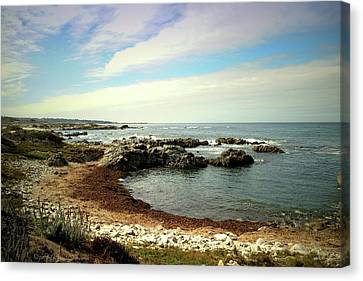 Sea And Sky Canvas Print by Joyce Dickens