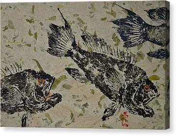 Sea Bass School On Olive Mango Paper  Canvas Print