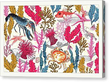 Sea Bed Canvas Print by Jacqueline Colley