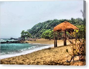 Sea Breeze Canvas Print by Chandima Weeratunga