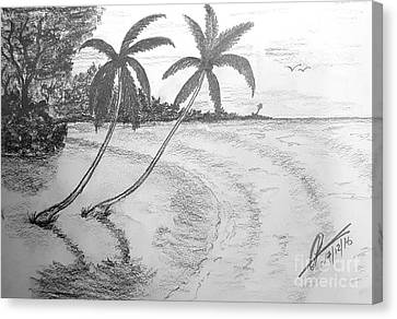 Sea Breeze  Canvas Print by Collin A Clarke