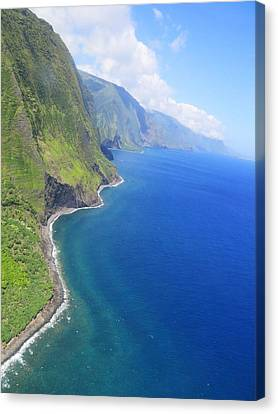Sea Cliffs At Molokai Hawaii Canvas Print by Stacia Blase