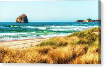 Sea-grass Dunes Canvas Print