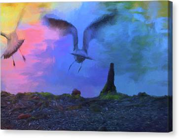 Canvas Print featuring the photograph Sea Gull Abstract by Jan Amiss Photography