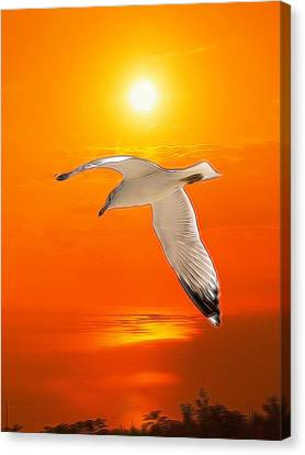 Canvas Print featuring the photograph Sea Gull by Athala Carole Bruckner