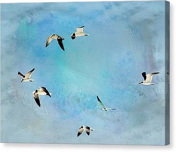 Canvas Print featuring the photograph Sea Gulls In Flight by Athala Carole Bruckner