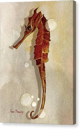 Sea Horse In Watercolor Canvas Print by Anne Beverley-Stamps