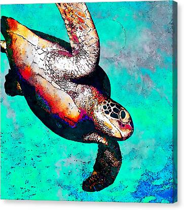 Turtle Shell Canvas Print - Sea Is My Home - Hawksbill by Stacey Chiew