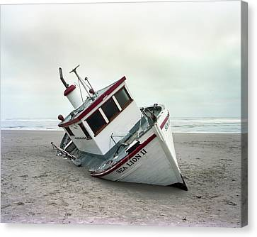 Sea Lion II - Last Day On The Beach Canvas Print by HW Kateley
