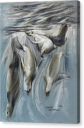 Hornby Island Canvas Print - Sea Lions - Hornby Island Bc by Jennifer Christenson
