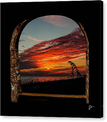 Sea Oats And Sunset Canvas Print